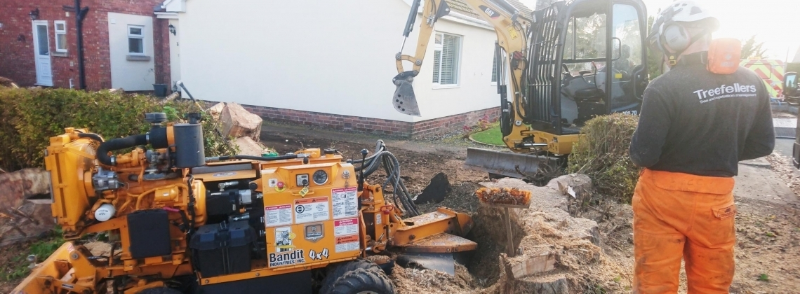 Stump removal - remotely controlled stump grinding machine in operation