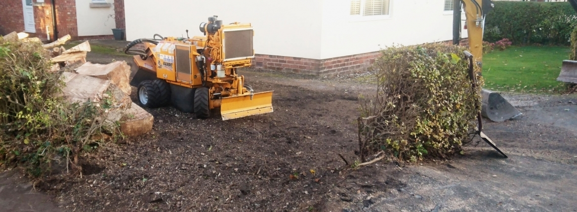 Stump removal - on completion of stump grinding