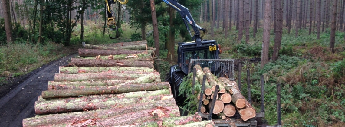 Working with large and small woodland owners