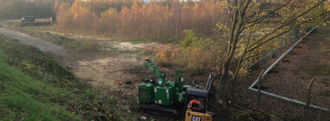 Tree clearance for civil engineering utility project- start